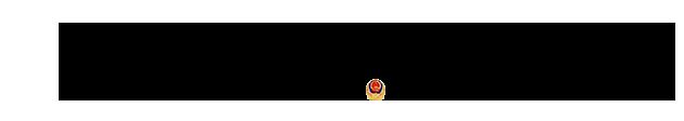 大队网站底部文字副本.png